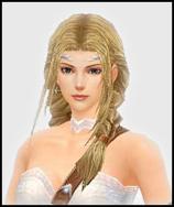 Chars - Saiba sobre os chars do Mu Online C_elf